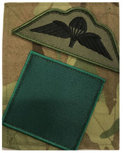 Load image into Gallery viewer, 3 Para DZ / Wings Sewn PCS Patch Subdued