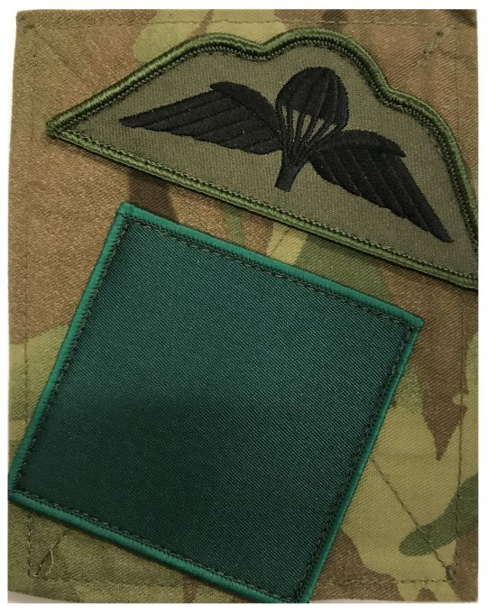 3 Para DZ / Wings Sewn PCS Patch Subdued
