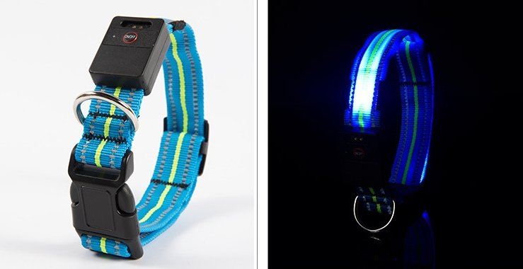 The Best Brands Waterproof LED Dog Collar - Dsishop