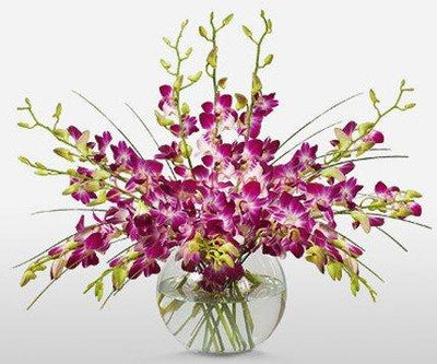 GLOWING PURPLE ORCHIDS IN FISH BOWL flowers CityFlowersIndia