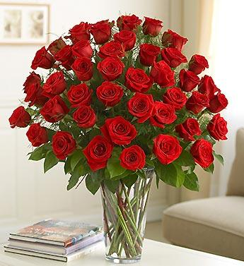 True Love Rose Romance flowers CityFlowersIndia