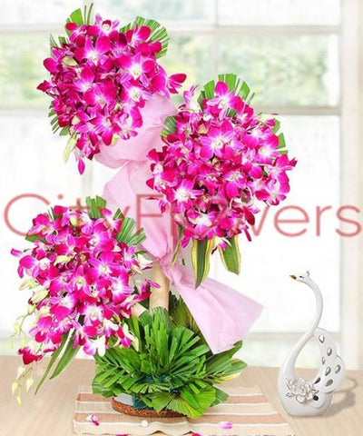 TO SUNNY SKIES ORCHIDS flowers CityFlowersIndia