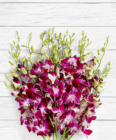 BUNCH OF AMAZING ORCHIDS flowers CityFlowersIndia