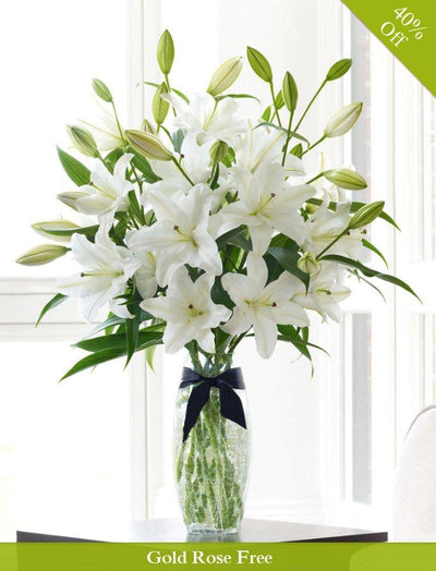 Innocence White By City Flowers flowers CityFlowersIndia