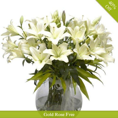White Purity By City Flowers flowers CityFlowersIndia
