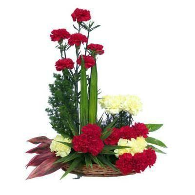 Blossoming Care Carnations flowers CityFlowersIndia