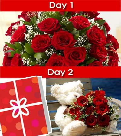 2 Days Surprise (1) flowers CityFlowersIndia