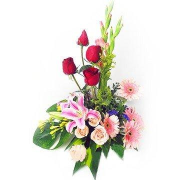 Blushing Innocent Love flowers CityFlowersIndia