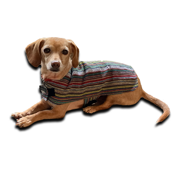 Dog and Cat Pet Poncho - Bohemian Multicolor