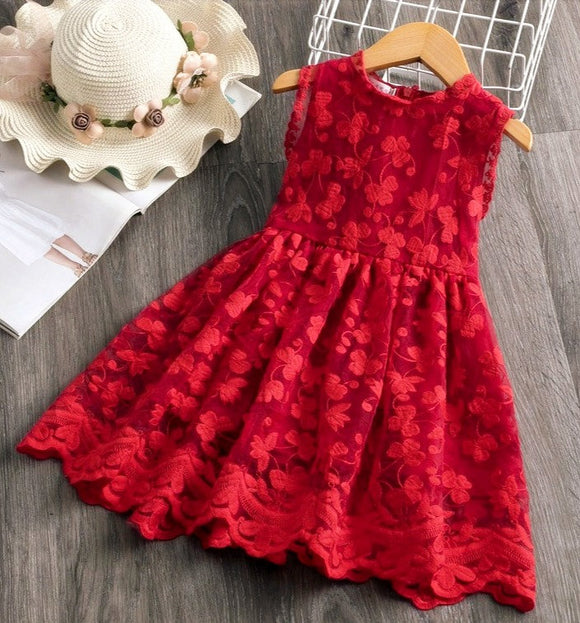 Girls Lace frock