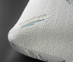 Reedham's Latex Pillow with Eucalyptus (Traditional)
