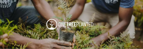 ONE TREE PLANTED X EIVTHELABEL