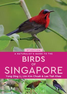 A Naturalist's Guide to: The Birds of Singapore