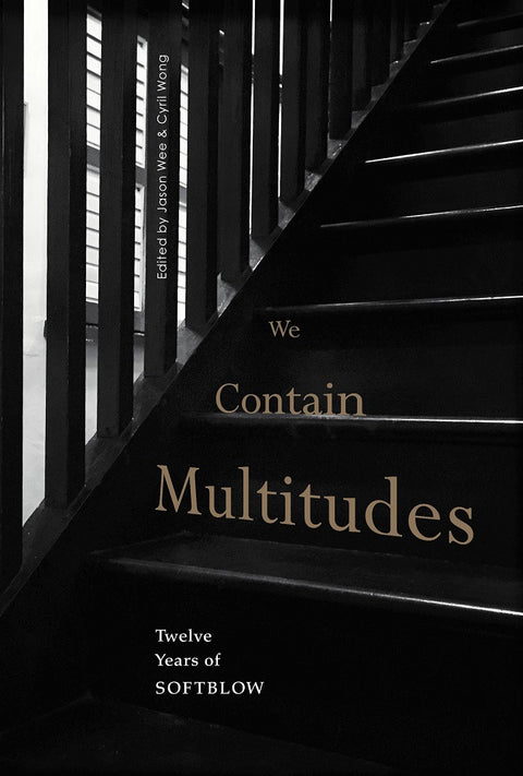 We Contain Multitudes: Twelve Years of Softblow