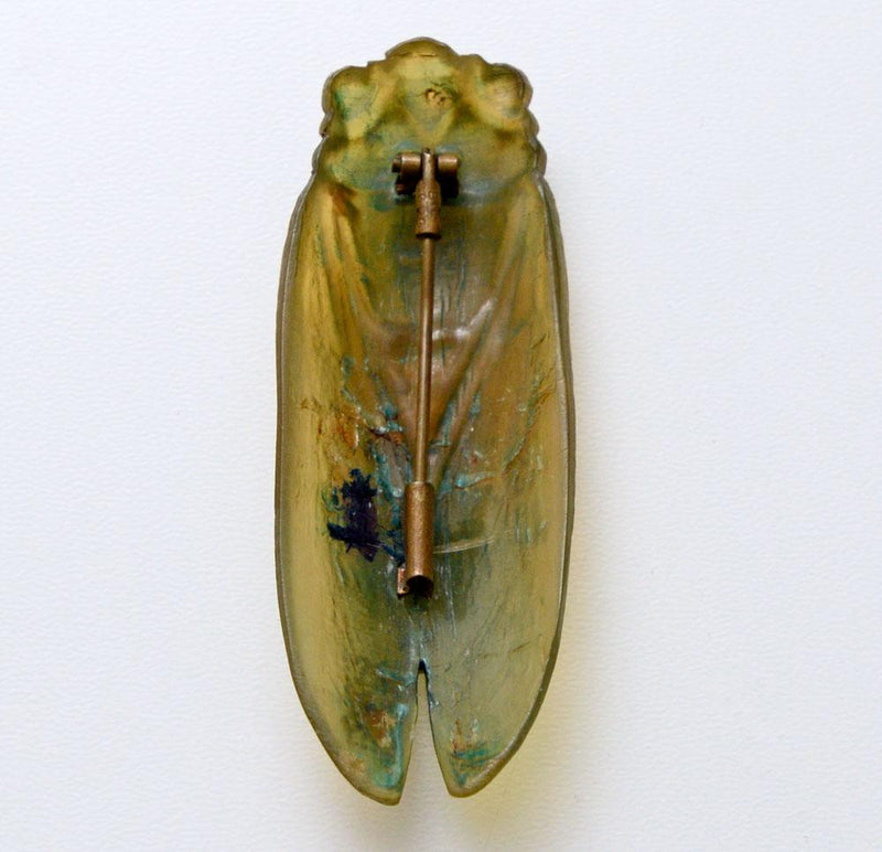 Cicada brooch, hand carved in horn. French Art Nouveau.