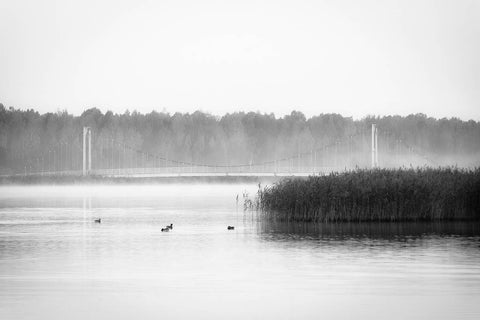 Foggy Morning on Tamula Lake II - fine art photography store - elvistudio photography - A4 (210x297mm) / No Frame - 7