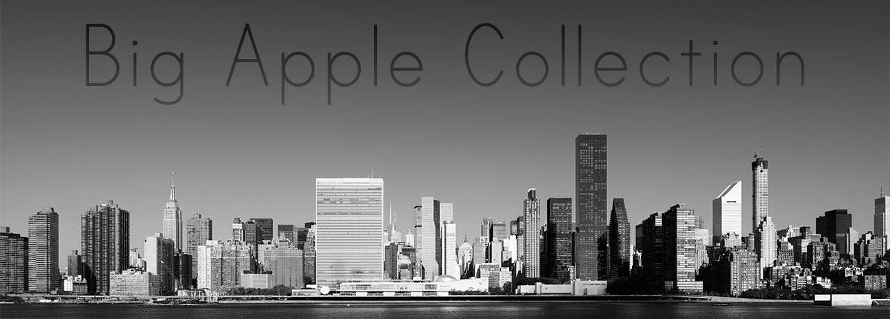 Collection of New York Framed Fine Art Photography Prints
