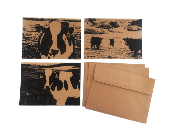 Cows Assorted set of 3 note card set