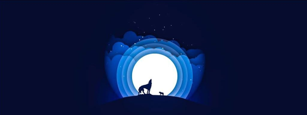 wolf howling in the dark