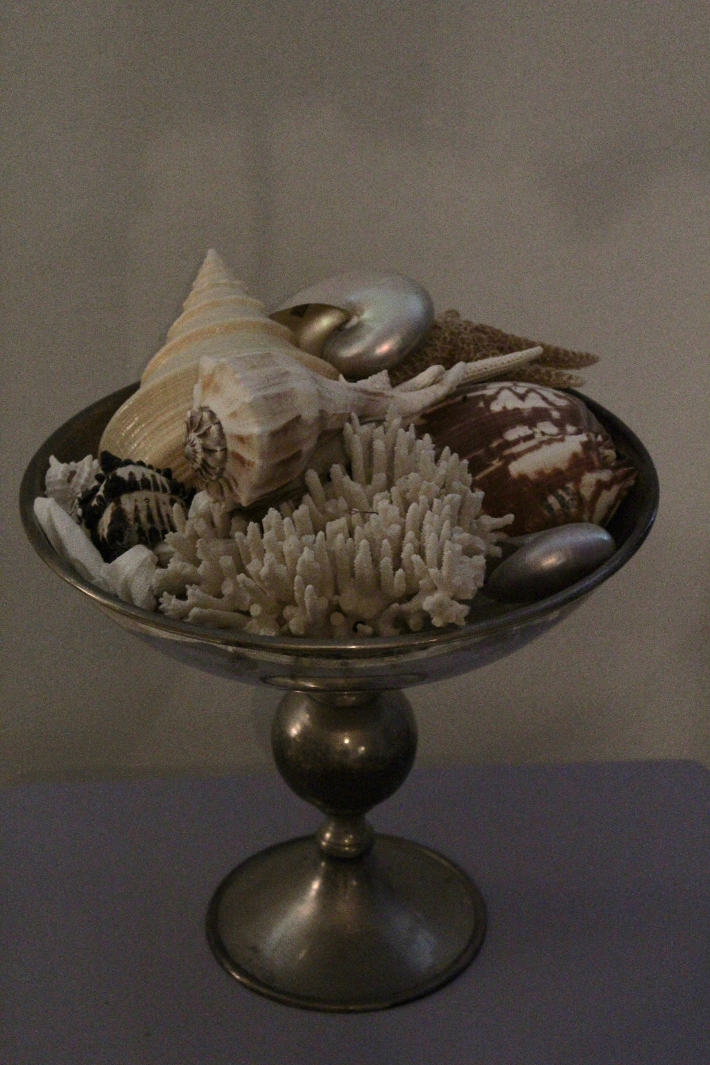 Large silver plated Compote with Stellar Shells ~ Finding Nemo ?
