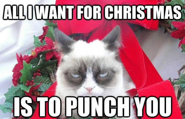 All I want for Christmas is to Punch you - Xmas meme