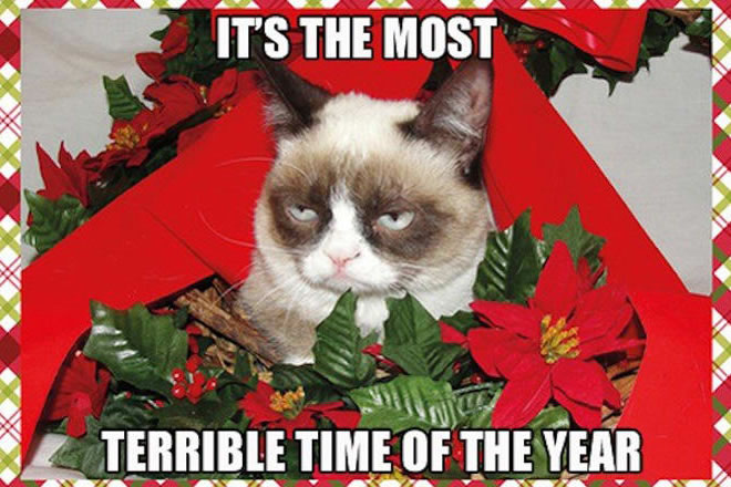 Christmas: It's the Most Terrible Time of the Year - Angry Cat Christmas Meme