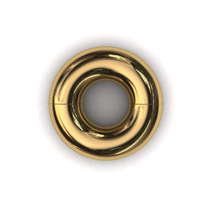Segmented PA Ring 10mm or 00 gauge - Price on Application - BMG Body Jewellery