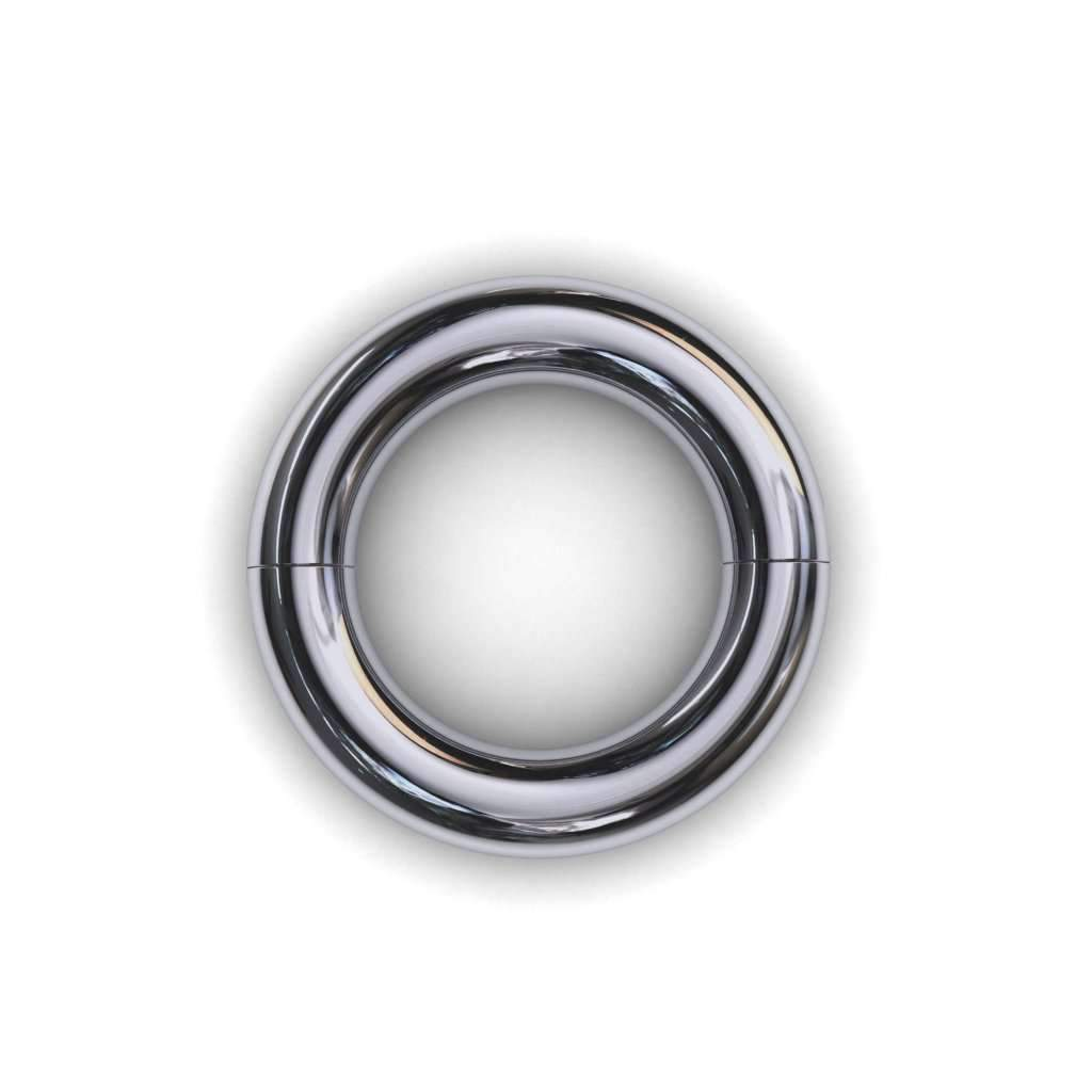 Segmented PA Ring 6mm or 2 gauge - Price on Application - BMG Body Jewellery