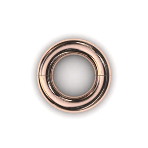Segmented PA Ring 8mm or 0 gauge - Price on Application - BMG Body Jewellery