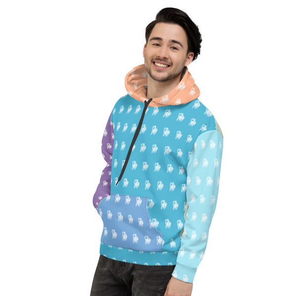 BenJammin Colorblock 1 Unisex Hooded Sweatshirt