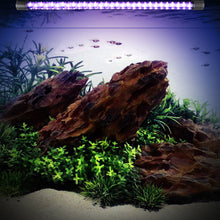 Load image into Gallery viewer, Multi-Color LED Aquarium-Fish Tank Lamp