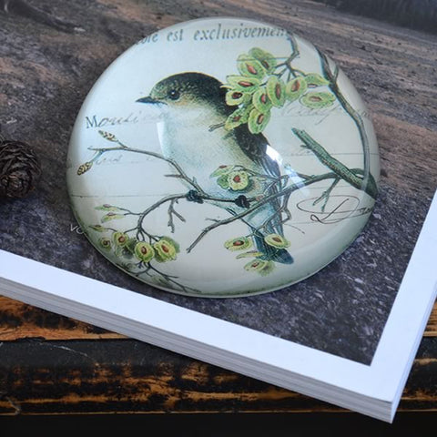 Glass Paperweight with bird