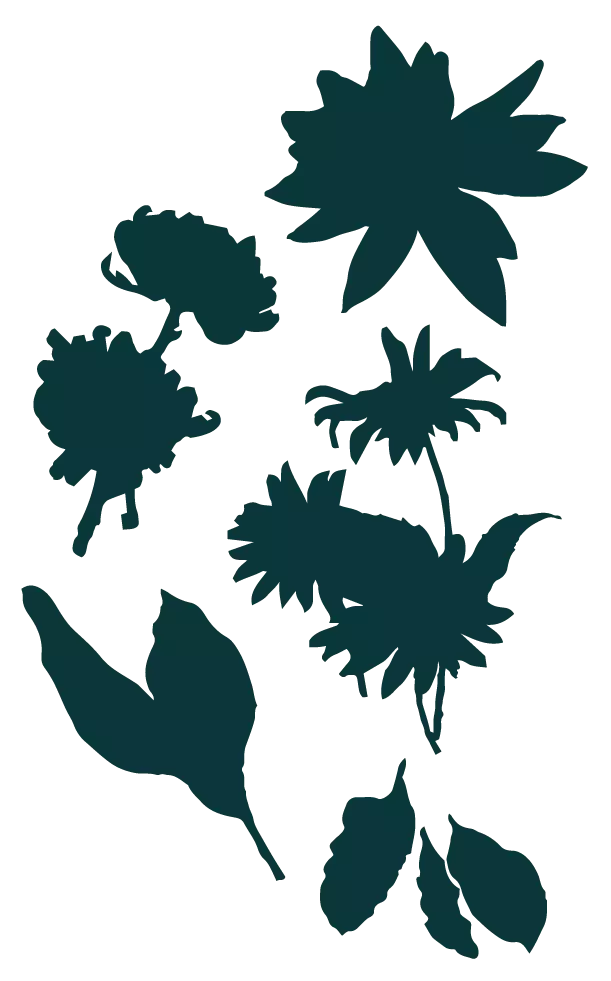 Delicate silhouettes of floral shapes