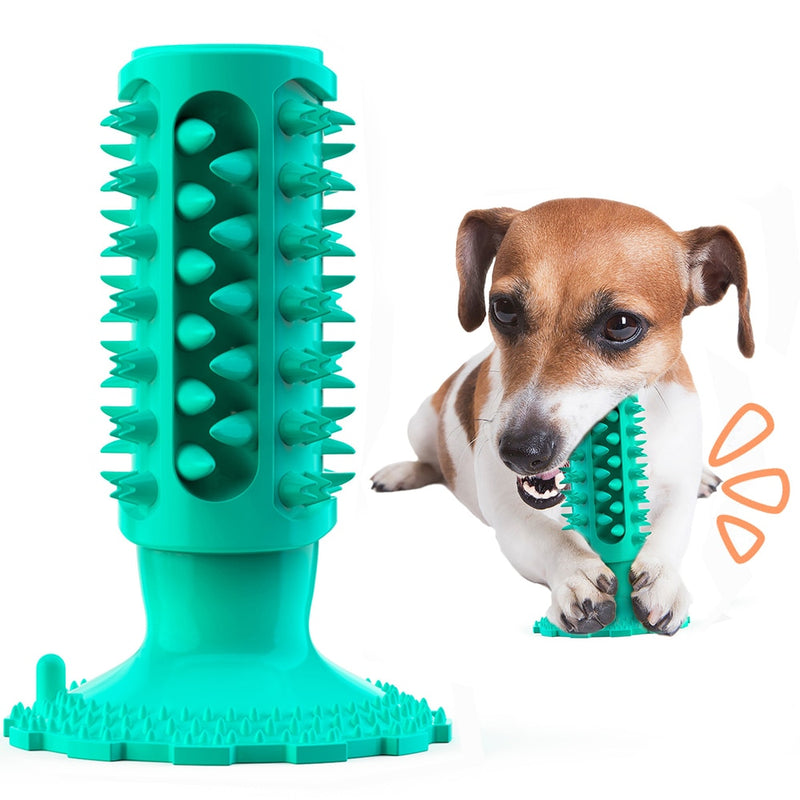 Dog Toys for Dogs Toothbrush Squeak Toys Dog Supply Accessories Pet Products