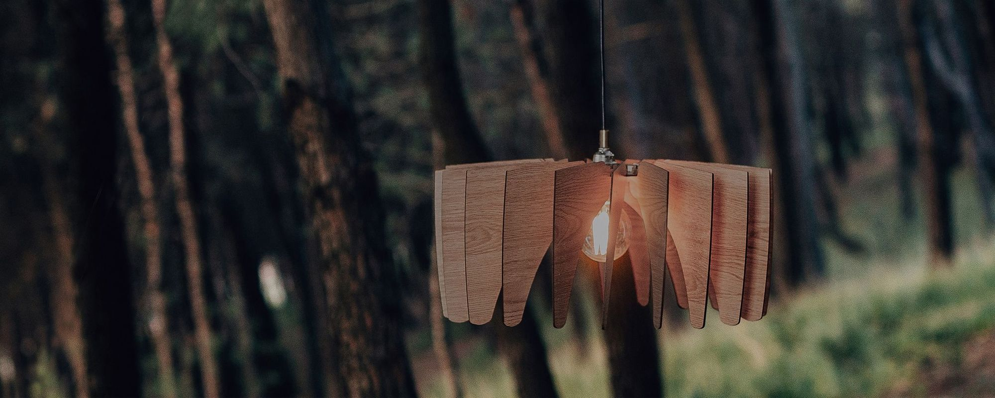 Wood Pendant Lights Dezaart Collection