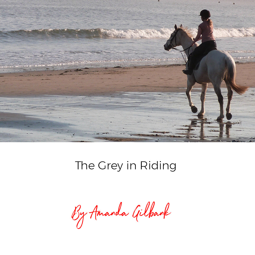 The Grey in Riding