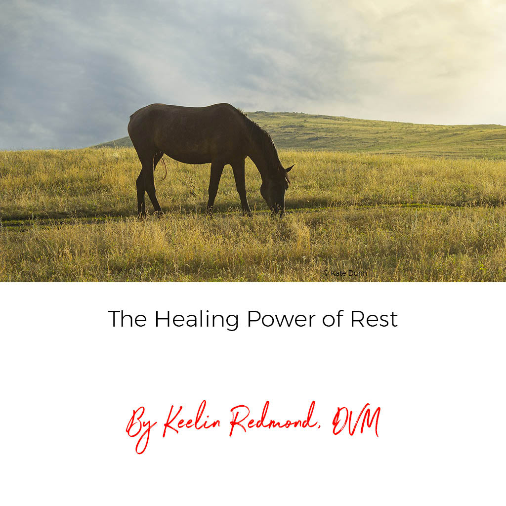 The Healing Power of Rest