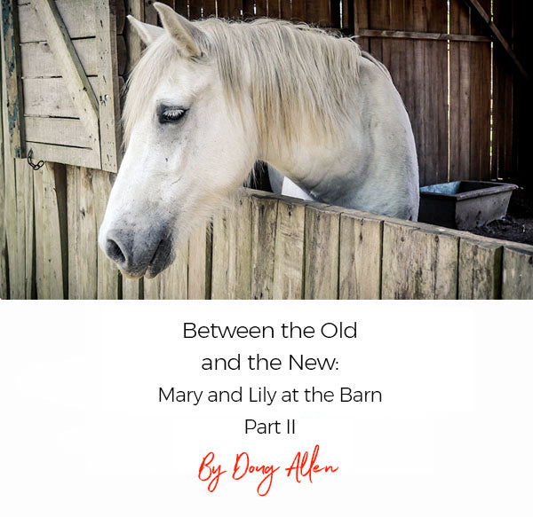 Part II - Between The Old and The New: Mary and Lily at The Barn