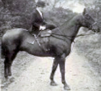 Riding Side Saddle - a visit with Nadya Brown - Red Scarf Equestrian Canada