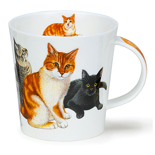 Buy Dunoon Mugs in Canada Cairngorm Cats & Kittens Ginger Fine Bone China Made in England Tea Coffee Red Scarf Equestrian