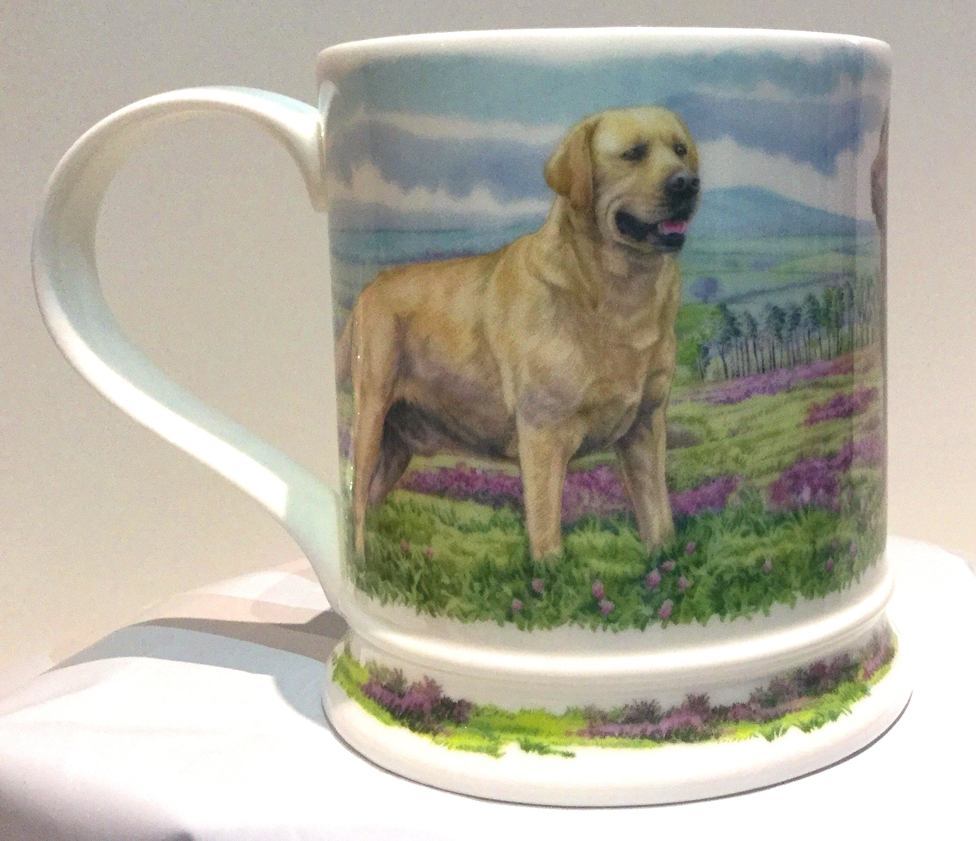 Buy Dunoon Mugs in Canada : Iona Country Dogs Labradors - Red Scarf Equesrian