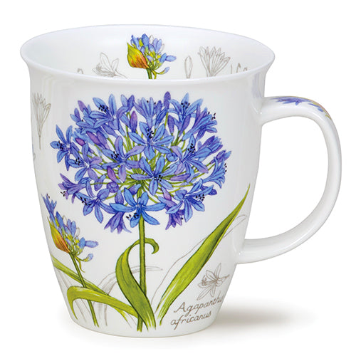 Buy Dunoon Mugs in Canada Nevis Botanical Sketch Agapanthus Fine Bone China Made in England Tea Coffee Red Scarf Equestrian