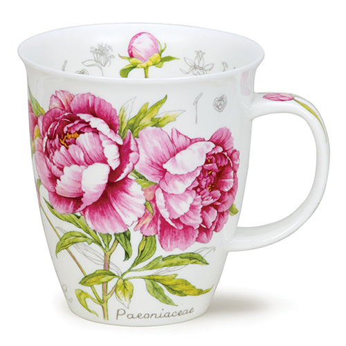 Buy Dunoon Mugs in Canada Nevis Botanical Sketch Peony Fine Bone China Made in England Tea Coffee Red Scarf Equestrian