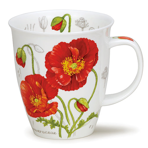 Buy Dunoon Mugs in Canada Nevis Botanical Sketch Poppy Fine Bone China Made in England Tea Coffee Red Scarf Equestrian