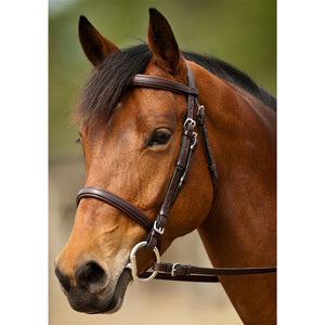 Event Bridle by Nunn Finer