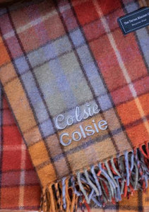 Recycled Wool Waterproof Picnic Blanket in Assorted Colours and Tartans and Leather Carrying Strap Set