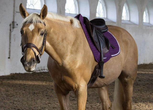 Limited Edition: Plum Saddlepad
