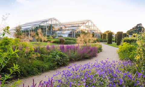 The glasshouse borders and Glasshouse at RHS Wisley