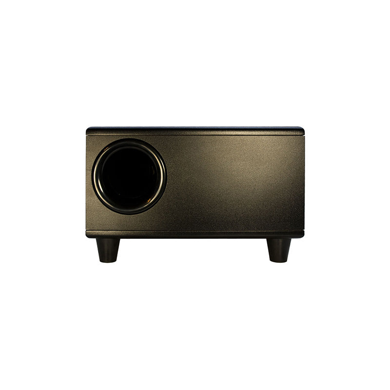 Earthquake CP-9 slimline subwoofer bass port