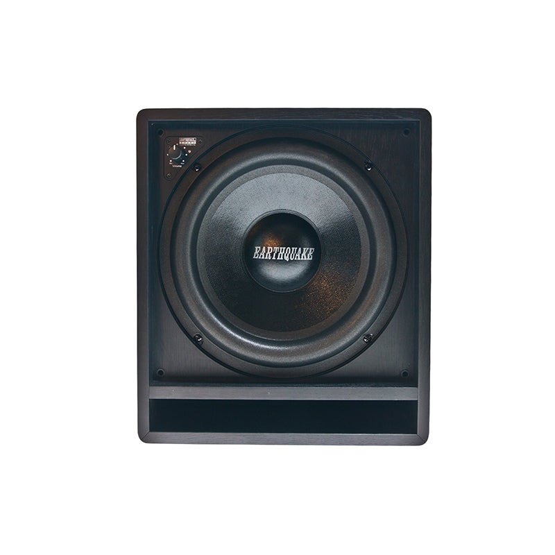 Earthquake FF-10 Subwoofer front driver